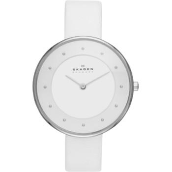 Часы Skagen SKW2136