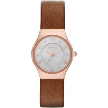 Часы Skagen SKW2210