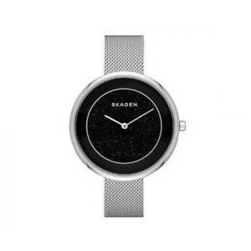 Часы Skagen SKW1070