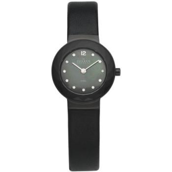 Часы Skagen 456SBLB