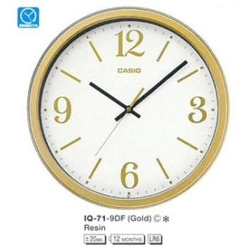 Часы Casio IQ-71-9D (A)