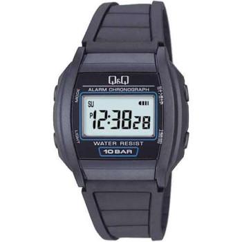 Часы Q&Q ML01P102Y